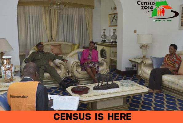 Censuse More