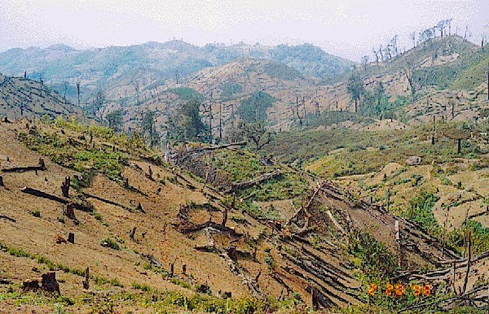 deforestation and uganda Uganda's redd+ process is coordinated at policy level by the national climate  the key drivers of deforestation and forest degradation4 in uganda are: i).