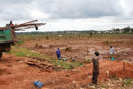 VEterans destroy wetland