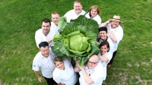 cabbage_challenge__pa