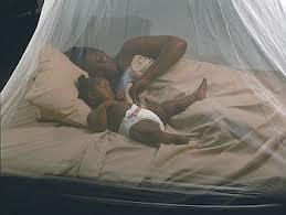 mosquito nets new